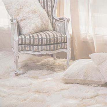Becklers Carpet Outlet Inc Image